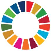 agenda 2030 logo